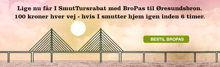 BroPas
