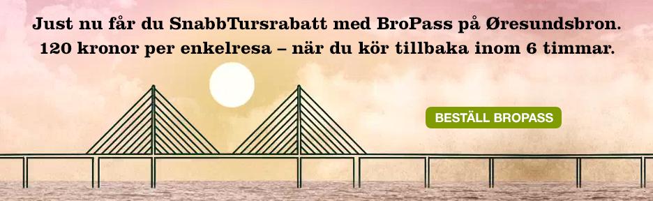 BroPass